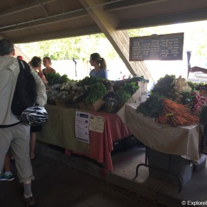 bogert-farmers-market-0520