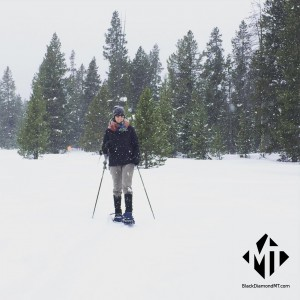 There are numerous Snowshoeing & Cross Country Skiing options