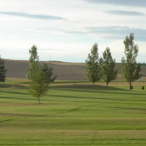 cottonwood-hills-golf-course-02