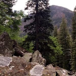 hyalite-creek-trail