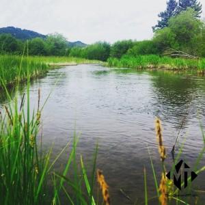 jackson-creek-bozeman-montana