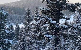 Lot 13 Wedeln Drive, Bozeman, Montana 59718