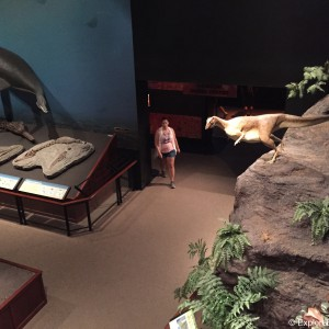 museum-of-the-rockies-0513